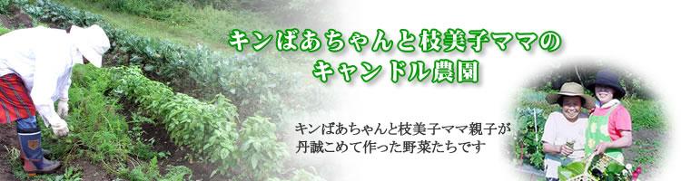 キンばぁちゃんと枝美子ママのキャンドル農園